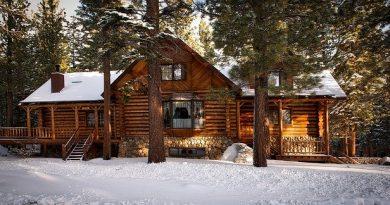 maison rondins bois